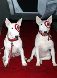LASSIE AND BULLSEYE AT MADAME TUSSAUDS