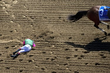 Preakness Stakes at Pimlico Race Course