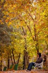 Fall Season in Iran