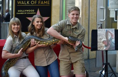 Steve Irwin is honored with posthumous star on Hollywood Walk of Fame