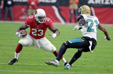 Cardinals' Peterson picks up 9 yards
