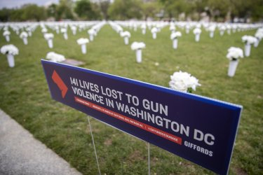 The Gun Violence Memorial on the National Mall