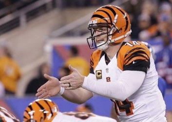 Cincinnati Bengals Andy Dalton talks to the offense