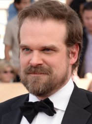 David Harbour attends the 23rd annual SAG Awards in Los Angeles
