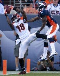 Denver Broncos Host the Cincinnati Bengals in Denver