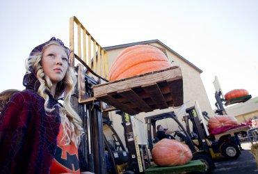 2058 pound pumpkin sets North American record at Half Moon Bay, California competition