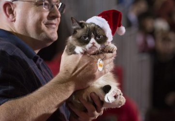 Grumpy Cat rides in the 84th Annual Hollywood Christmas Parade in Los Angeles