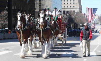 St. Louis St. Patricks Day Parade