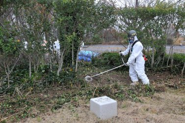 Japan's GSDF begins decontamination operation