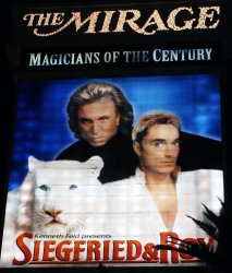 Roy Horn of Siegfried and Roy attacked by tiger