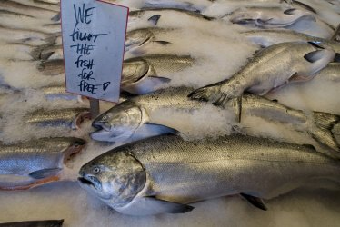 SEATTLE'S PIKE PLACE MARKET TURNS 100 YEARS OLD