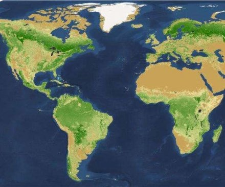 Good news: Earth has more than 3 trillion trees