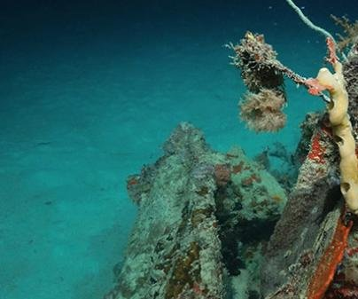 Downed World War II aircraft missing for 72 years discovered near Pacific islands