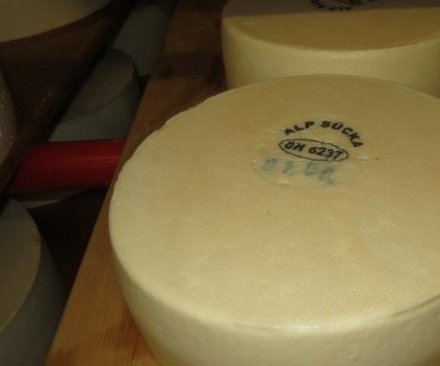 1.4 tons of contaminated cheese stolen