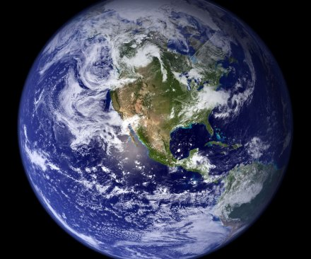 Study: Earth may host 1 trillion species