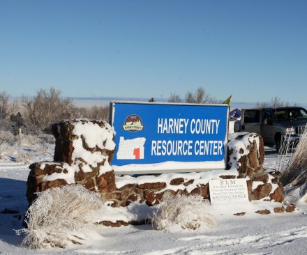 Last four occupiers at Oregon refuge surrender, taken into FBI custody
