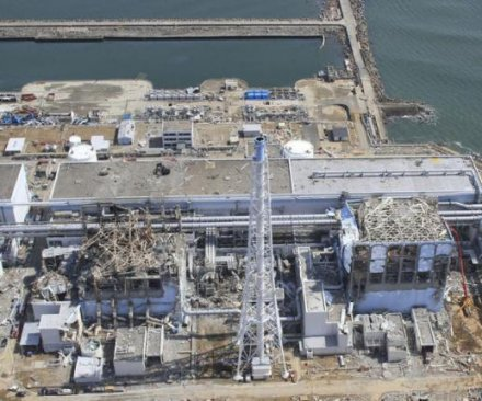 Nuclear plant opens in Japan