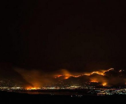 Wildfire burns at least 24 homes, 4,000 acres in central Washington
