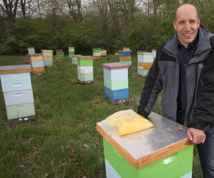 Honeybees pick up pesticides from non-crop plants, too