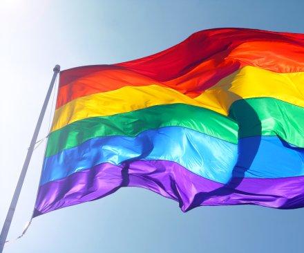 Ireland backs gay marriage in 'landslide' victory