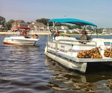 Environmentalists try to restore an oyster population in Barnegat Bay