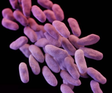 Scopes in L.A. superbug case linked to outbreaks in other states
