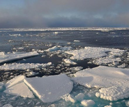 Russia files claim for Arctic Ocean territory at United Nations