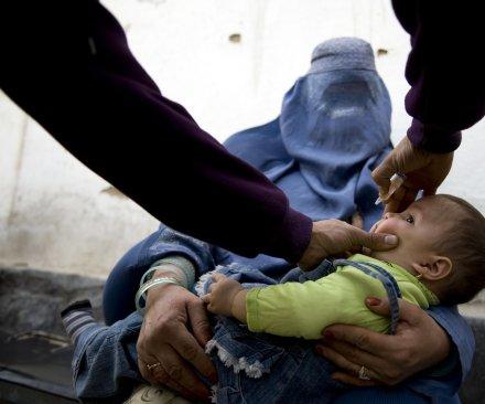 A patient's lingering polio virus complicates its eradication