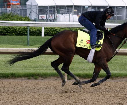 Kentucky Derby 2016 predictions: Which horses will win, place, show