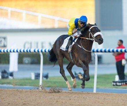 Prince Bishop beats Americans in Dubai World Cup