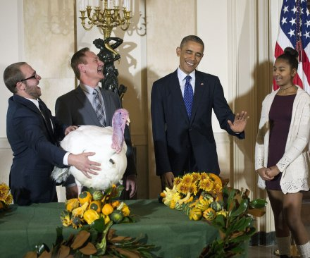 President Obama pardons the Thanksgiving turkey