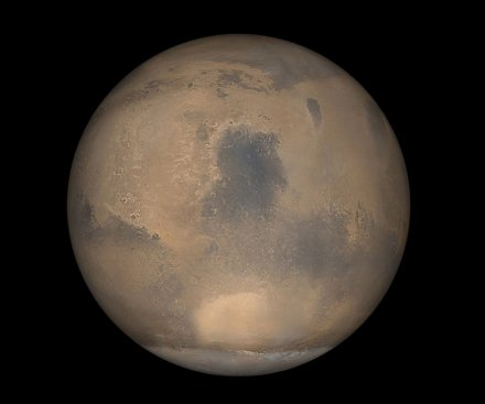 Martian meteorite proof that Mars could host life