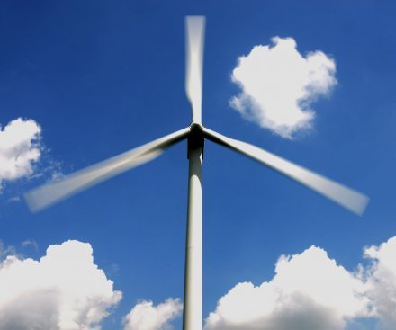 Wind turbines a risk to birds living as far as 100 miles away