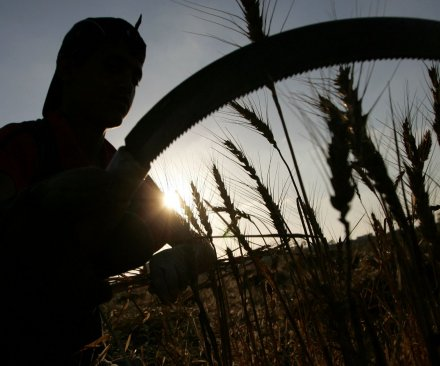 Federal regulators say Kraft Foods fixed wheat prices