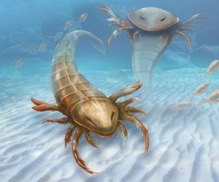 Scientists discover ancient six-foot-long sea scorpion