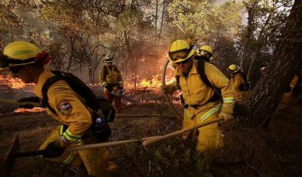 California governor declares state of emergency amid raging Napa wildfire