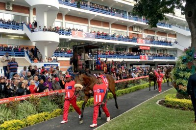 South Africa's horse racing party ready for world stage