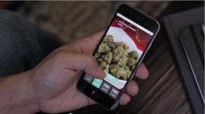 Medical marijuana ordering app offers pot delivery