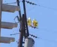 Mylar balloons collide with California power line, spark explosion
