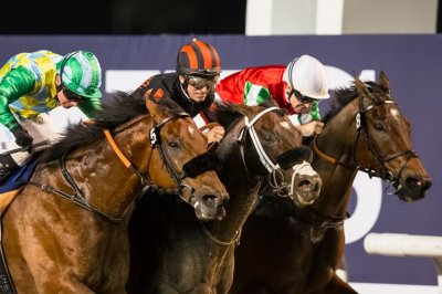 Drama stretches from Dubai to Florida in week's horse racing