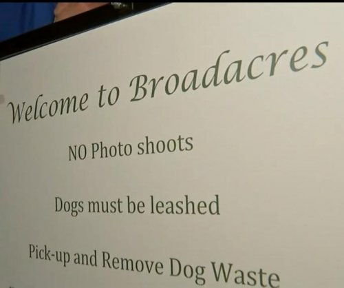 Scenic Houston neighborhood trying to ban photo shoots
