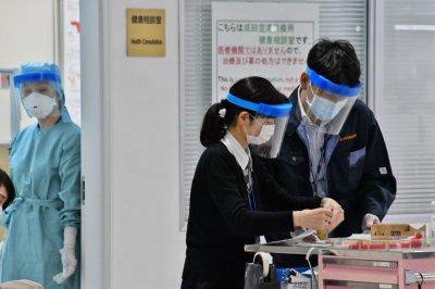Viruses related to coronavirus found in Japan, Cambodia bat samples