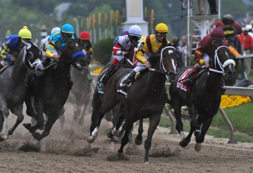 Female horses named Eclipse finalists