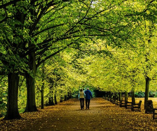 Walking improves health outcomes for prostate cancer survivors