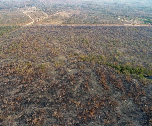 Environmentalists: Amazon fires in Brazil human-caused