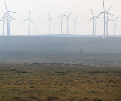 Canada sees emerging role for wind energy