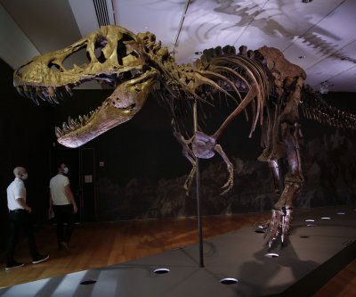 'Stan,' one of most complete T. rex skeletons, goes to auction