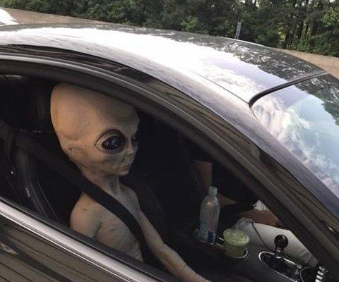 Life-size stuffed alien rides shotgun in speeding car