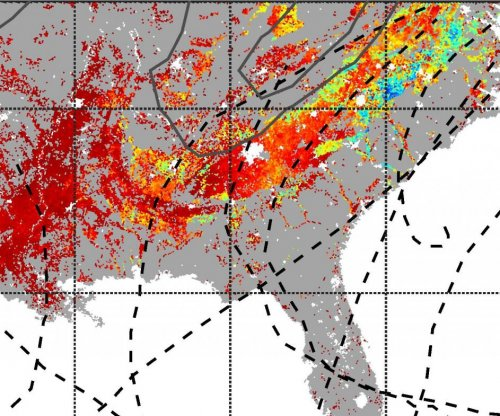 Hurricanes fuel carbon uptake in southeastern U.S. forests