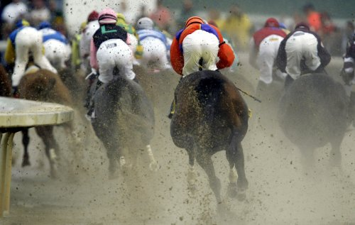 Big Brown favored in Kentucky Derby